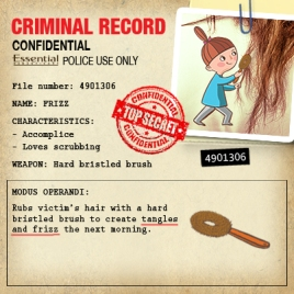 ESS_Criminal Record_Frizz