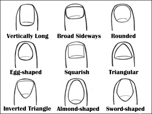 The Shape of Your Nails can reveal what type of person you